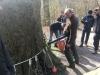 Tomografimåling samt resistograf måling - også kaldt rådmåling - af gammelt bøgetræ med kulsvamp