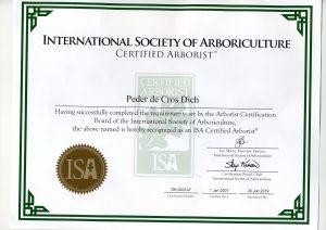 ISA certificeret arborist. Peder Dich. Dich Træpleje aps. Aarhus Århus Østjylland